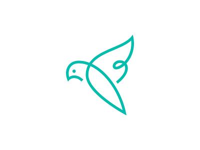 Unused Bird #1 animal eye beak aerial fly wings bird