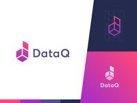 DataQ Logo