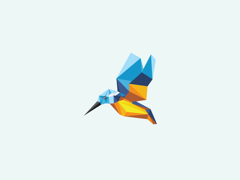 Unused Poly Bird logo identity mark proposal rejected bird kingfisher polygon