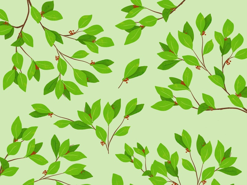 leaves and branches Pattern nature gree branches leaves tree design art illustration design vector design patterns