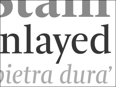 Stain Inlayed type gray grey specimen typedia serif typeface ourtype arnhem fredsmeijers