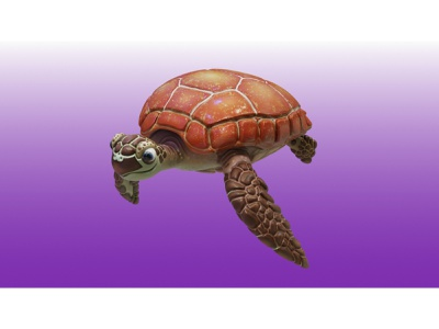 Sea Turtle 3D Model 3d art turtle krita zbrush 3dcoat blender
