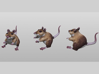 3D Wood Mouse Turns