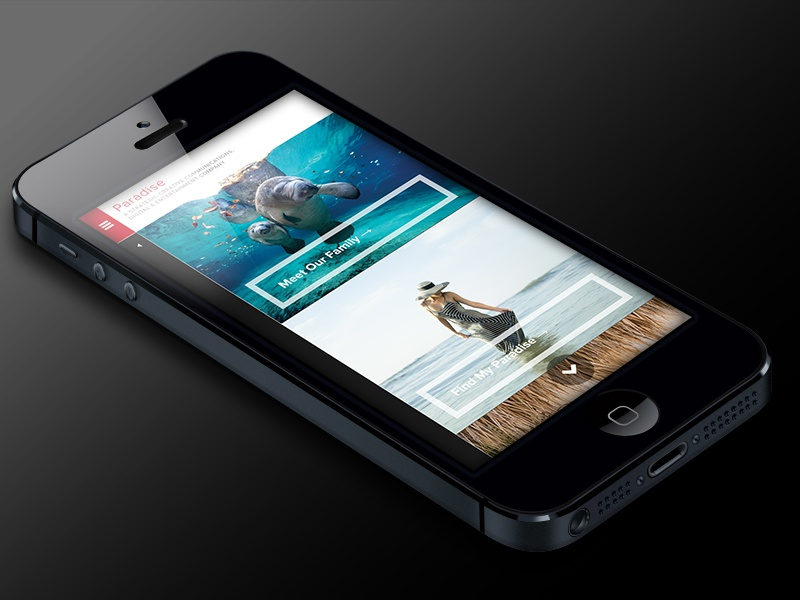 Paradise Advertising Website