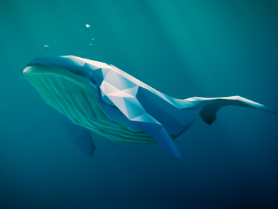 Low poly humpback whale
