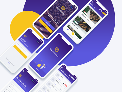 BeeScanning beescanning honey bee card mobile app appdesign app ux ui ios