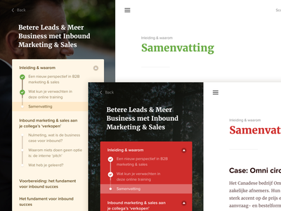 Samenvatting green beige red tube study article hamburger white text colors website