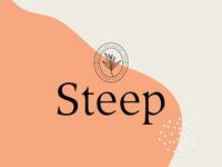 Steep Artisanal Tea Branding / Packaging