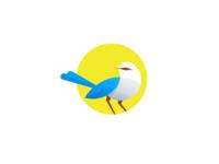 mokBird