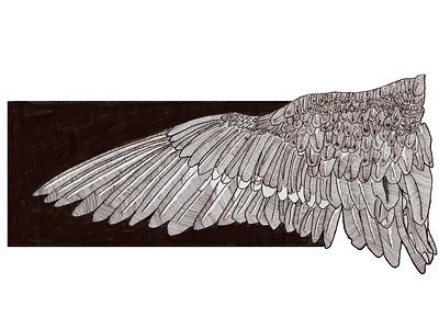 Wing photoshop illustration