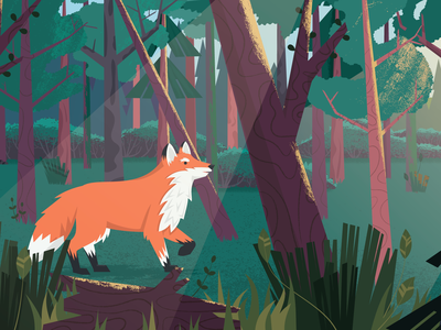 The Edge of the Woods woods plant grass sunlight tree fox forest texture design illustraion vector illustration vector