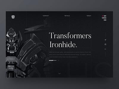 Transformers practice web