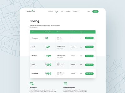 Pricing plans minimal billing maps coprorate enterprise large medium small icons table developers ux ui design web