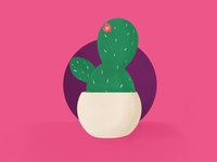 Cactus sketch succulent cactus vector icon design logo illustration