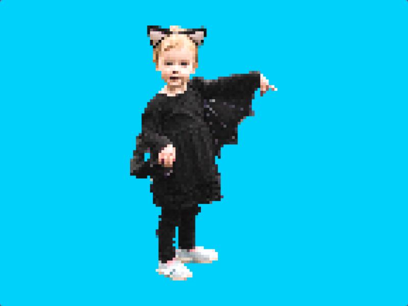 Batcat pixels
