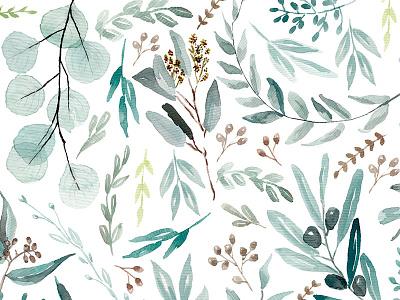 Eucalyptus original watercolor pattern nature botanic botanical watercolor leaves