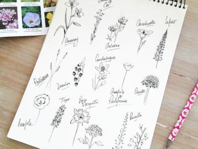 Ink wildflowes