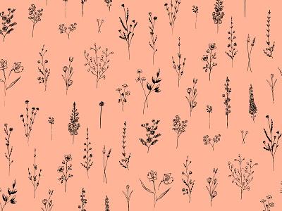 Summer Wildflowers design pink leaves drawing botanic black floral flowers pattern illustration