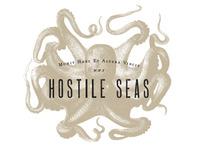 Hostile Seas Logo