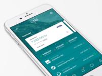 Bank App responsive card credit account minimal menu graph statistics dnb mobile app bank