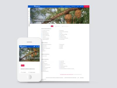 Website 01 - Programs