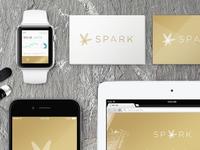 Brand Exploration for Spark Finance
