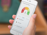 Credit Report Mobile view