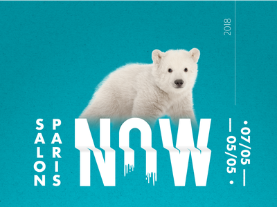 NOW | Event Branding enviroment bear polar ecology advertising vector typography logo design branding