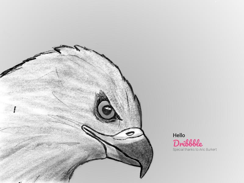Hello Dribbble! drawing sketch illustration