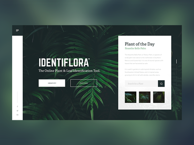 Identiflora Landing Page ux green search foliage plants floral leaves landing page website