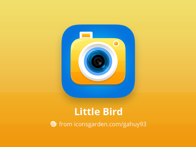 Free PSD Camera app icon instagram lens picture selfie editor image photo camera iconsgarden android ios icon