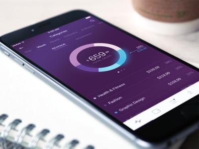 Payment Categories app colors concept gradient graph ui ux analytics purple payment money