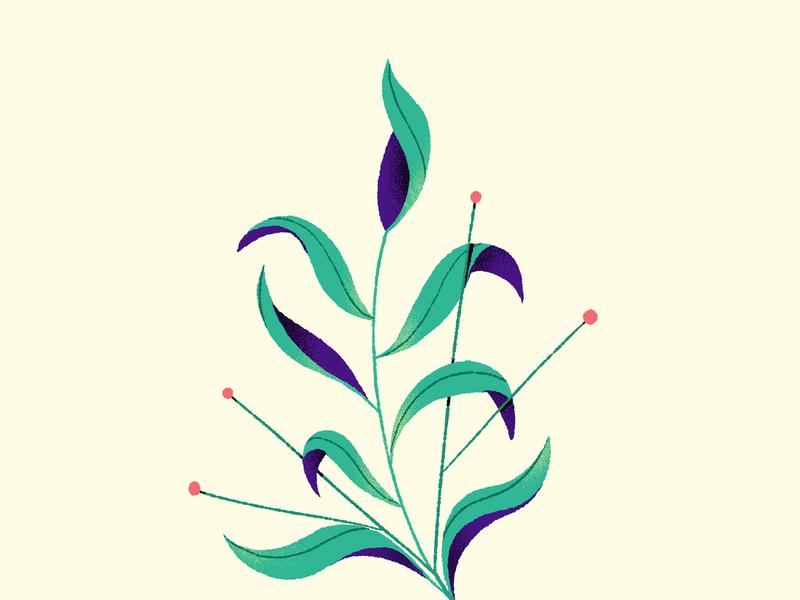 Flower sketch nature flower design illustration