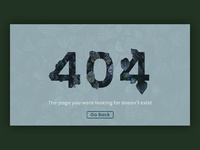 404 page dribbble