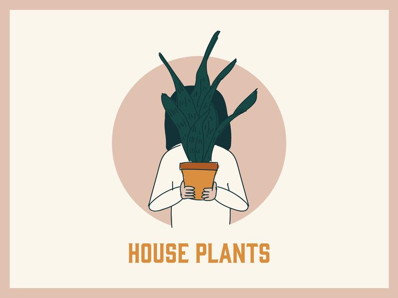 Millennial series plant snake plant house plants house plant millennial color color palette illustration