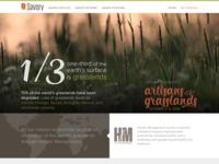 savory.global website