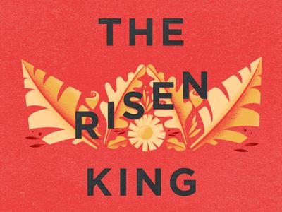 The Kingdom Story Week 11