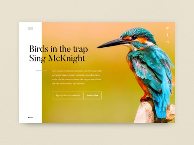 Newsletter Sign Up monday dailyui sign up colors typography birds ui design ui