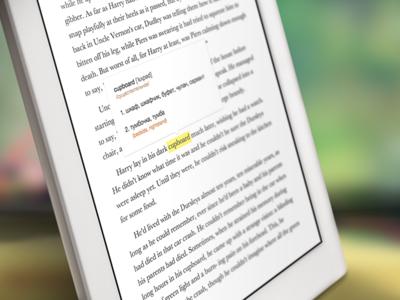 Ebook reader with built-in translator
