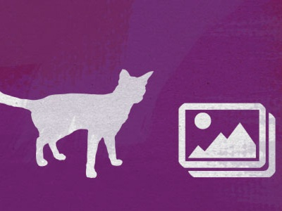 Questionable use of images ~Illustration for design arsenal texture images icons cat