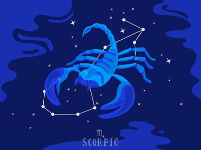 Zodiac signs: Scorpio animal horoscope zodiac web illustration stars nightsky scorpio blue vector flat illustration