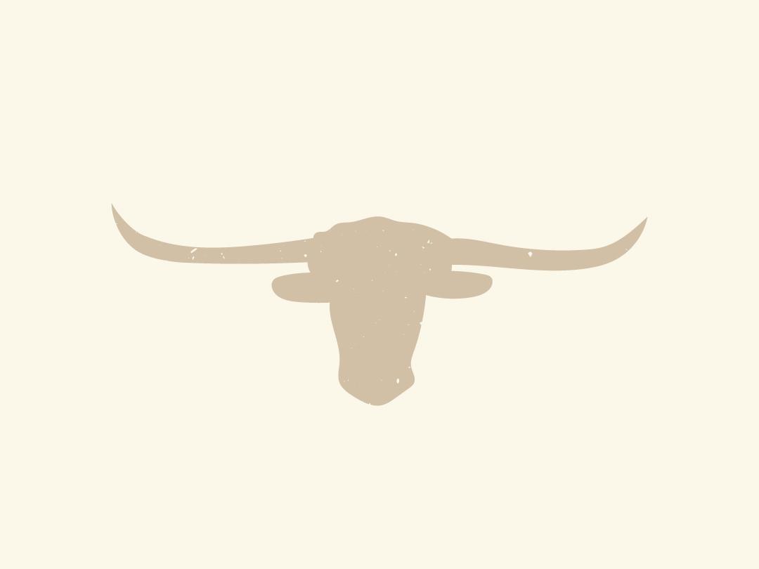 Longhorn Illustration 810 Ranch and Cattle Co illustration art illustration logo ranch farm branding logo design rustic design longhorn