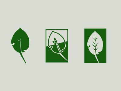Leaf Logo Mark Exploration - PART 1