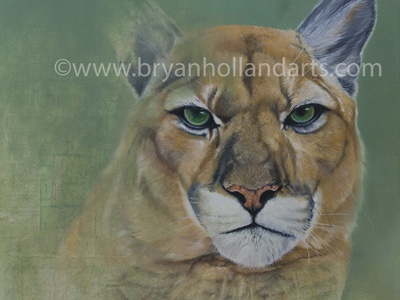 The Space Between mixed media oil painting mountain lion realism collage cat animal puma cougar