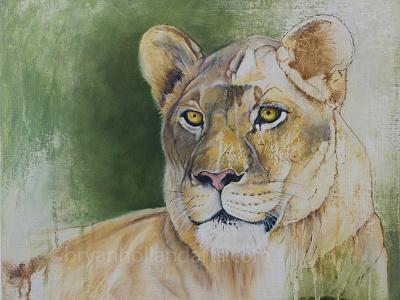 Essence animal lion lioness