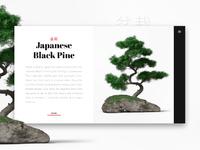 Daily ui bonsai scalzodesign hd