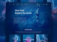 Underwater landing page