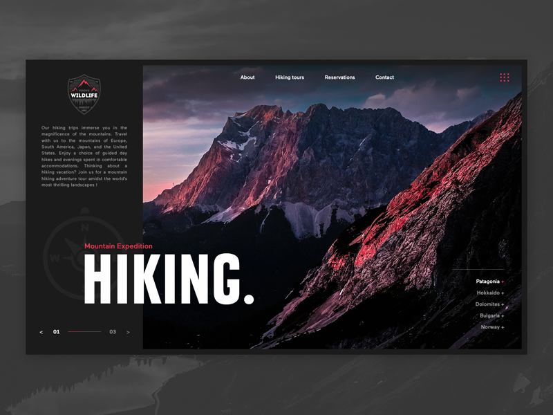 Hiking UI Web samuel scalzo wildlife template experiment ux ui dark mountain hiking website