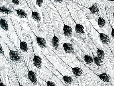 Emu Feather Pattern