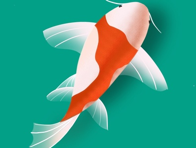 Fish Illustration on Pro Create